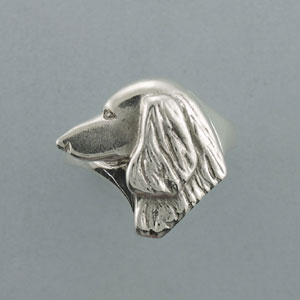 Dachshund, Longhaired Ring - SDCHL108